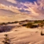 DAWN OVER THE DUNES by Avril L Candler